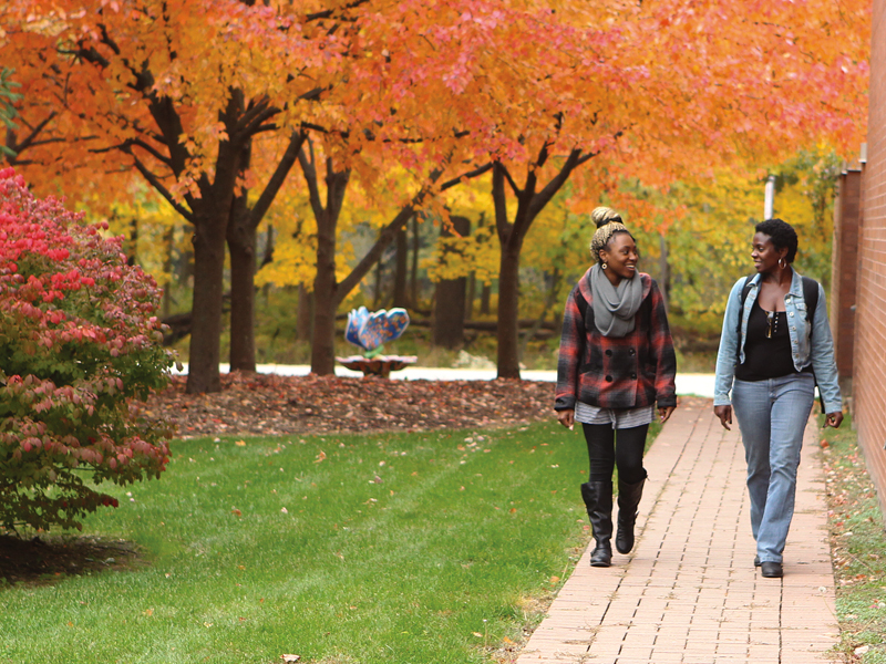 Fall Scene on Campus